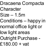 Dracaena Compacta Character Size – 1.5m  Conditions – happy in normal office light or low light areas  Outright Purchase - £180.00 + vat
